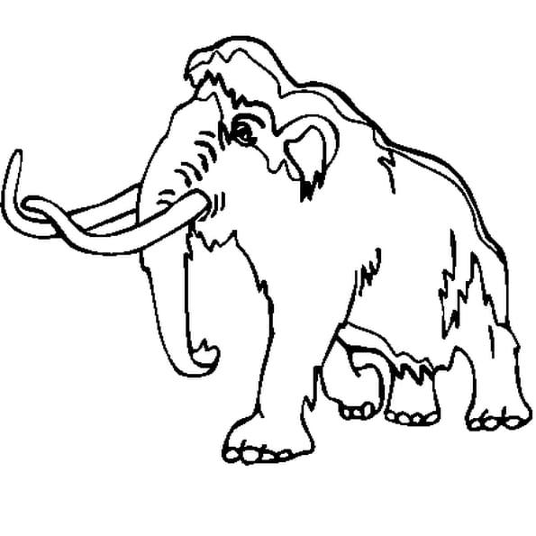 Dessin Animaux préhistoriques a colorier