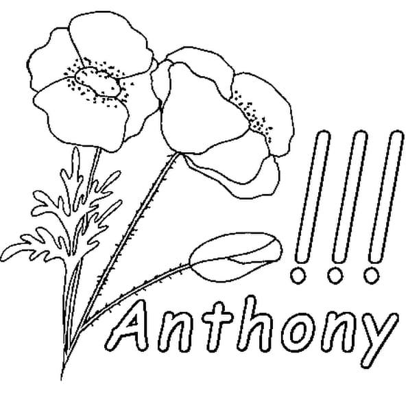 Coloriage Anthony en Ligne Gratuit à imprimer