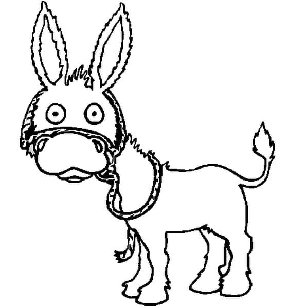 Dessin petit âne a colorier