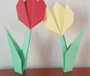 Origami fleur: tulipe avec sa tige, pliage facile