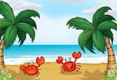 Comptine Un crabe