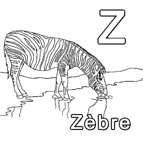 Coloriage Z comme Zèbre en Ligne Gratuit à imprimer