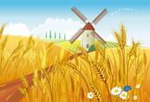 Comptine Les ailes du moulin