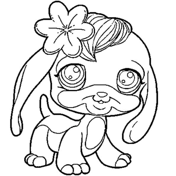 Coloriage chien pet shop en ligne gratuit imprimer - Dessin pet shop ...