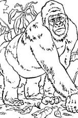 Coloriage Gorille en Ligne Gratuit à imprimer