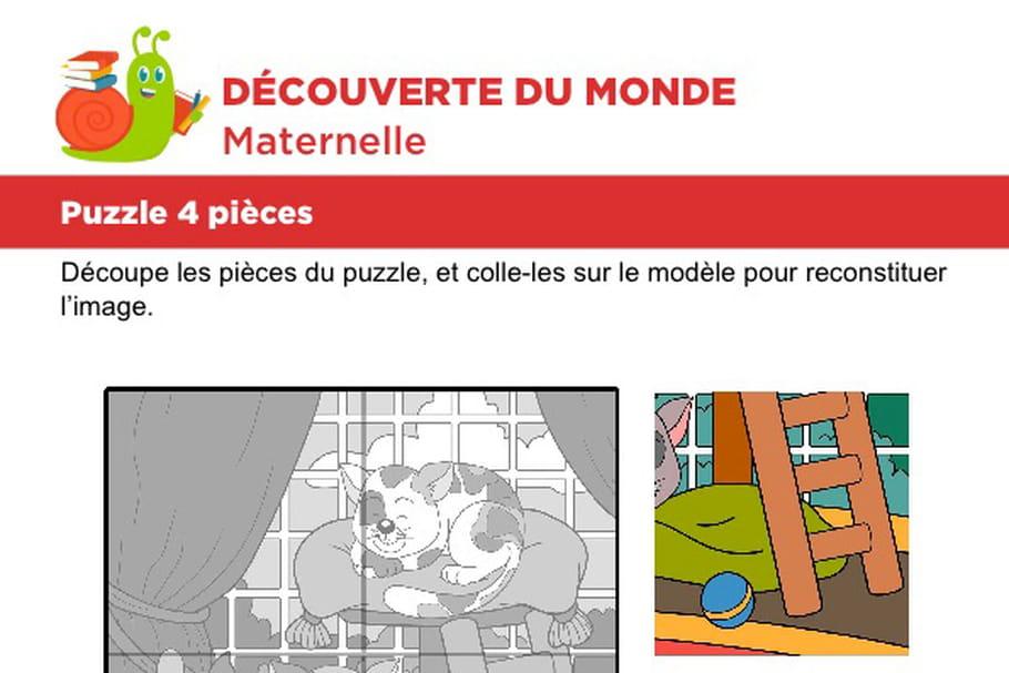 Puzzle 4pièces, deux chats