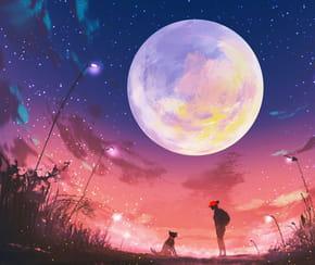 Bonsoir Madame la Lune