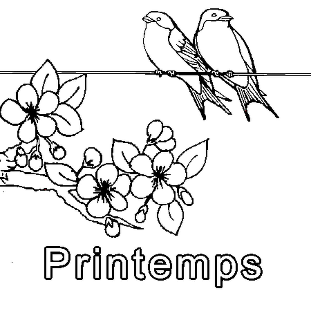 Coloriage Saison Printemps.Coloriage Printemps En Ligne Gratuit A Imprimer