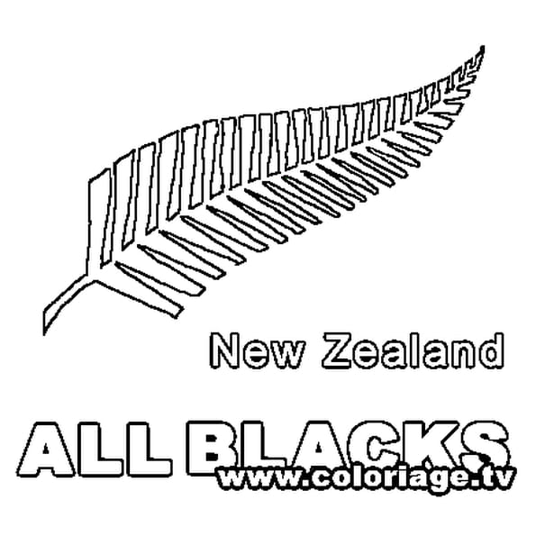 Dessin All Blacks a colorier