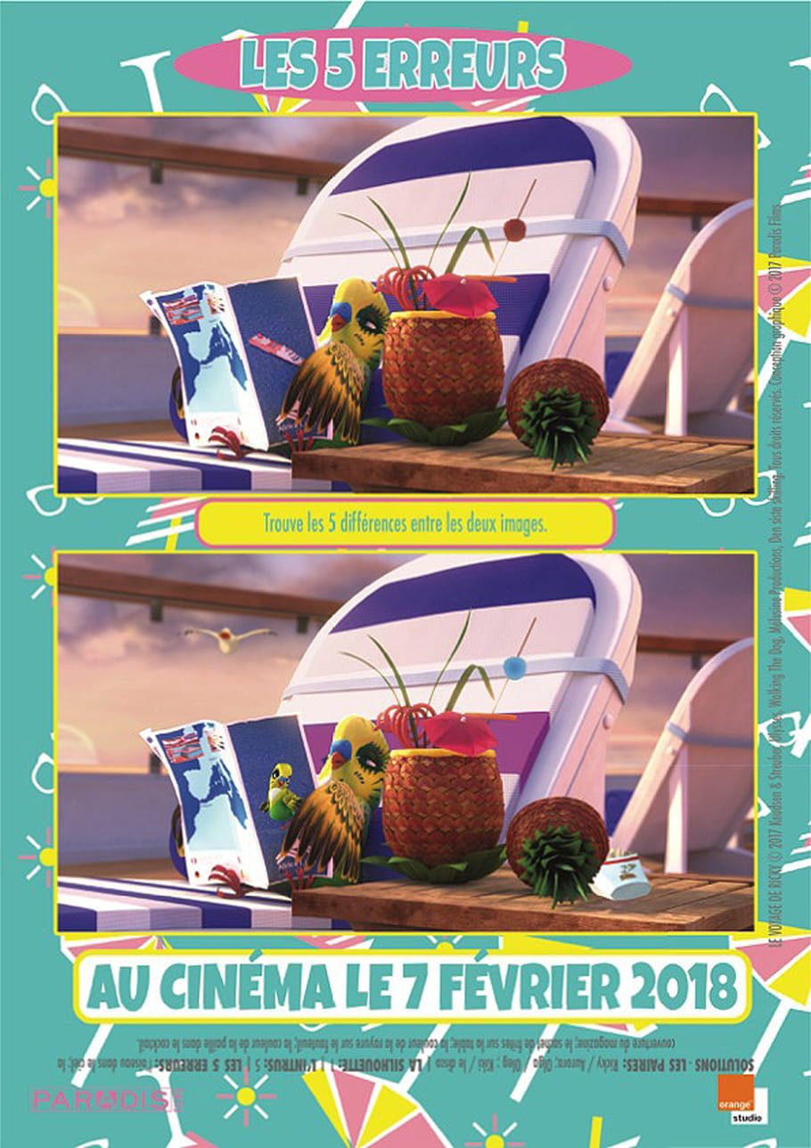 Jeux des 5erreurs du film le Voyage de Ricky