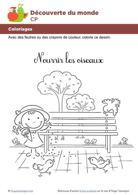 Coloriage Hugo Lescargot Oiseau.Coloriage Nourrir Les Oiseaux