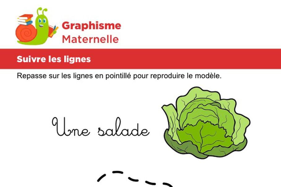 Suivre les lignes pour dessiner une salade