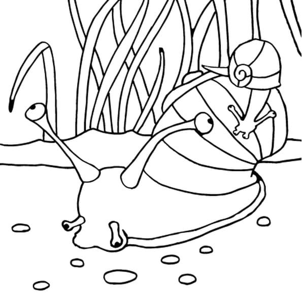 Coloriage dessin escargot en ligne gratuit imprimer - Coloriage escargot a imprimer ...
