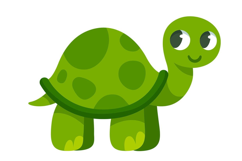 Coloriage tortue sur - Image tortue rigolote ...