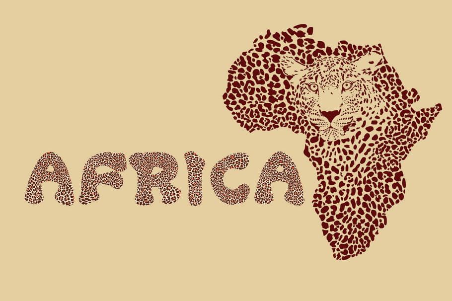 Les pays d'Afrique