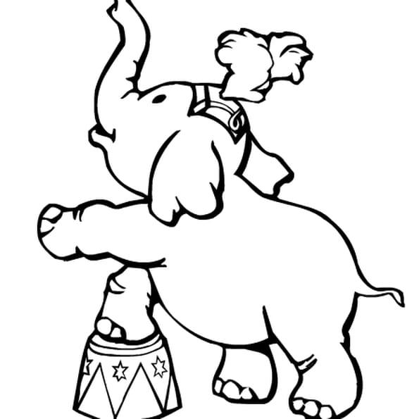 Coloriage cirque en ligne gratuit imprimer - Dessin de cirque ...