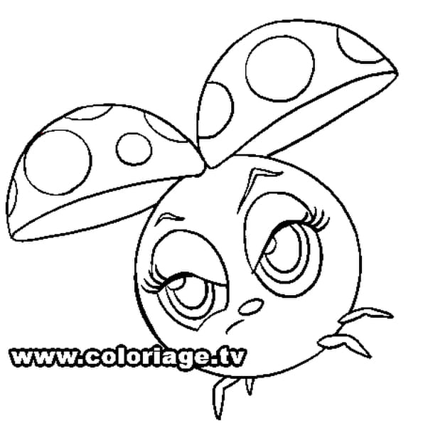 Coloriage zooble coccinelle en ligne gratuit imprimer - Dessiner une coccinelle ...