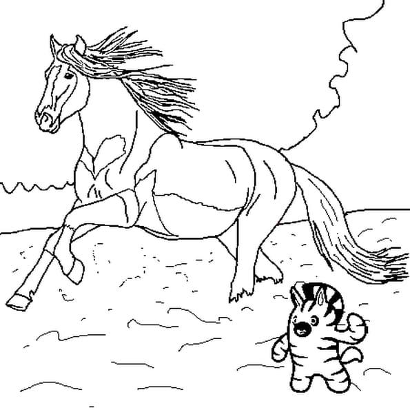 Coloriage Du cheval en Ligne Gratuit à imprimer
