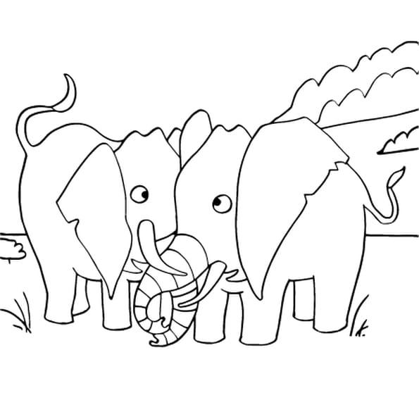 Coloriage dessin el phant en ligne gratuit imprimer - Elephant en dessin ...