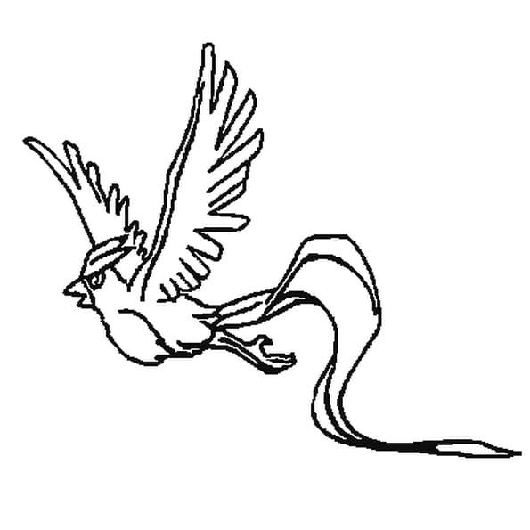 Coloriage pok mon artikodin en ligne gratuit imprimer - Coloriage pokemon en ligne ...