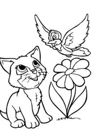 Chaton et Oiseau