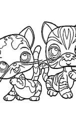 Coloriage pet shop chats