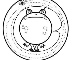 Animaux du monde, la petite grenouille