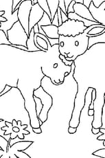 Coloriage agneaux en Ligne Gratuit à imprimer