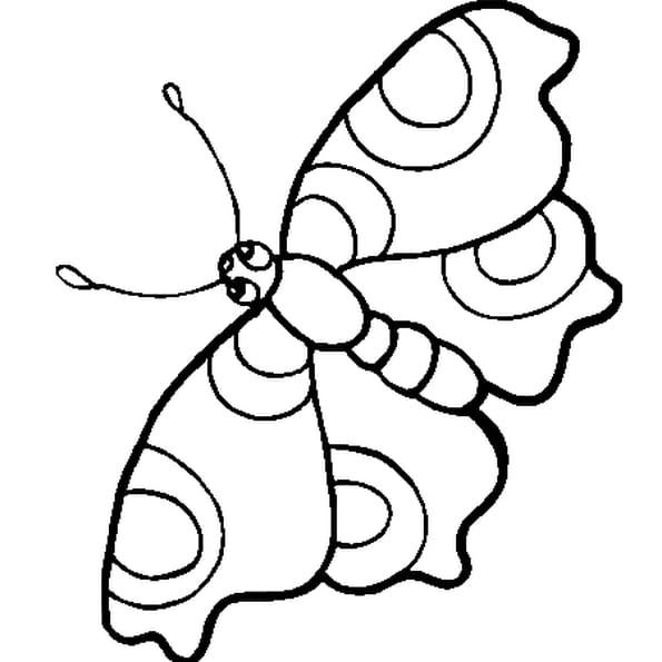Coloriage petit papillon en Ligne Gratuit à imprimer
