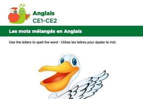 Les mots mélangés en Anglais, exercice13