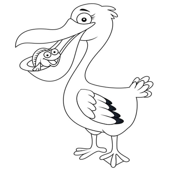Dessin Pélican et Poisson a colorier