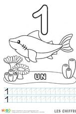 Chiffre1, le requin