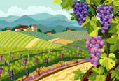 Chantons la vigne