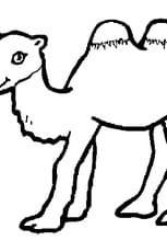 Coloriage Bébé Chameau en Ligne Gratuit à imprimer