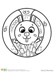 Animaux du monde, le petit lapin