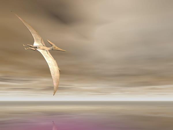 pterodactyle-dinosaures