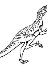 Coloriage Vélociraptor en Ligne Gratuit à imprimer
