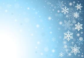 Les flocons de neige