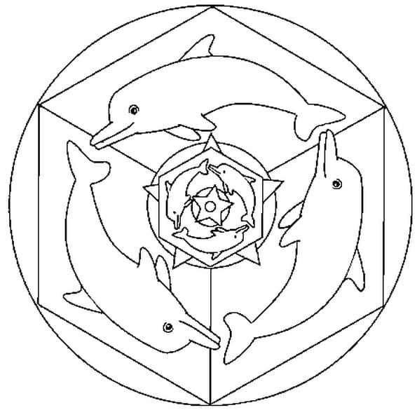 Dessin Mandala dauphin a colorier