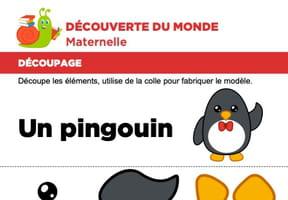 Découpage et collage d'un pingouin