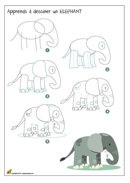 Dessiner un l phant - Comment dessiner un elephant facilement ...