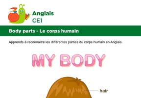 Le corps en Anglais, fillette vue de dos