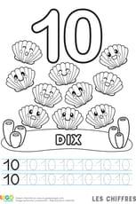 Chiffre10, les coquilles Saint-Jacques
