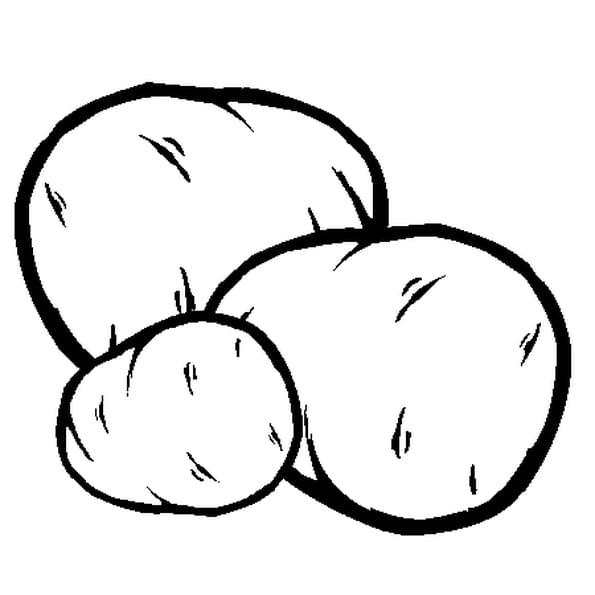 Pomme de terre coloriage pomme de terre en ligne gratuit - Dessin pomme a colorier ...