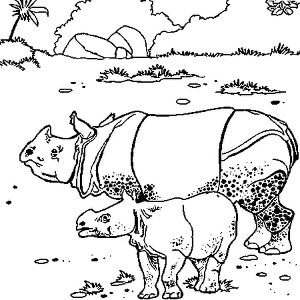Coloriage Rhinocéros en Ligne Gratuit à imprimer
