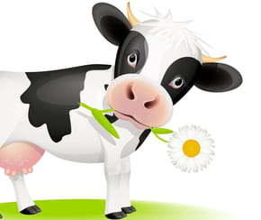 Ma petite vache