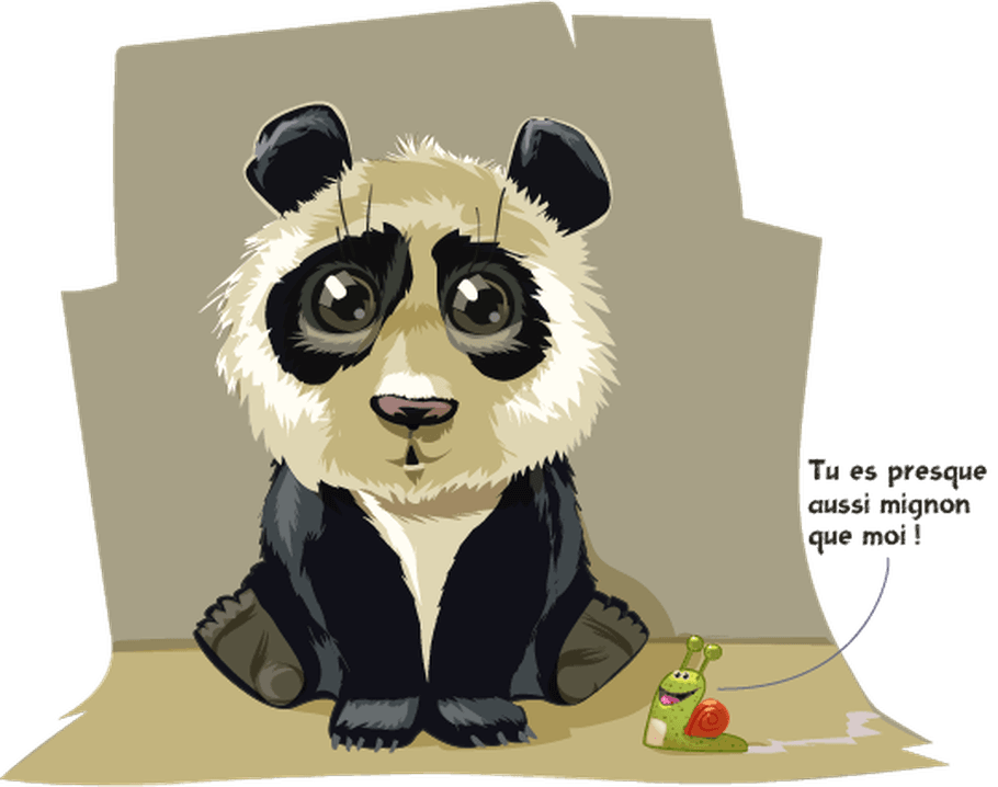 D'où vient le panda?