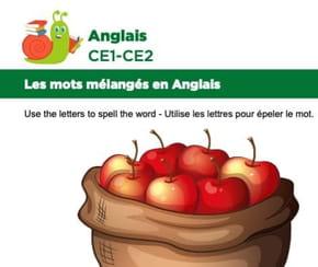 Les mots mélangés en Anglais, exercice15