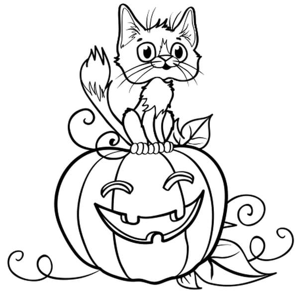 Coloriage Chat Sur Une Citrouille D Halloween En Ligne Gratuit A