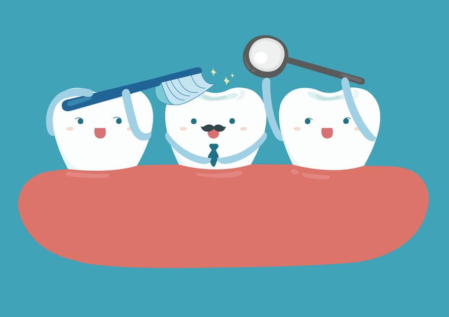 Tout savoir sur les dents